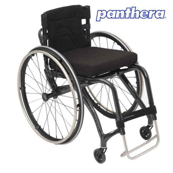 Panthera X